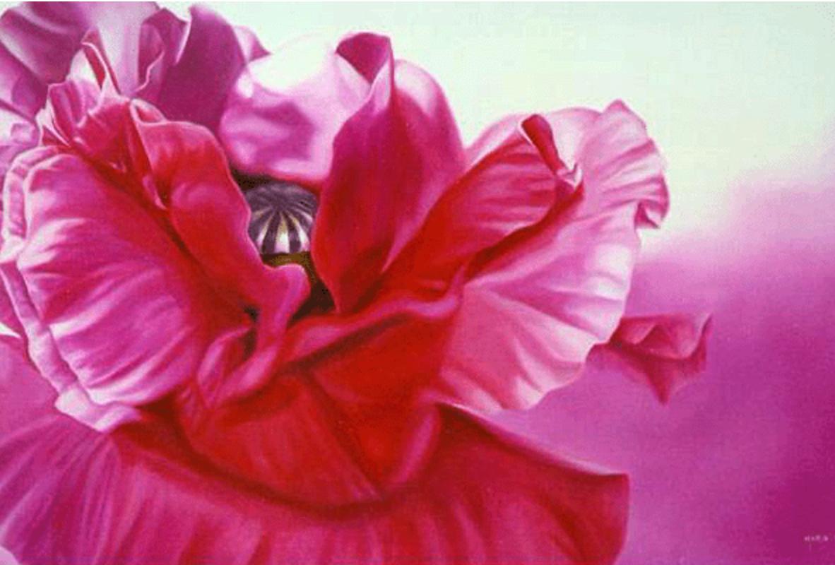 Maria Klokkou - Pink Poppy