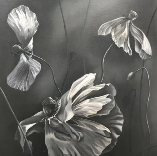 Black & White Poppies